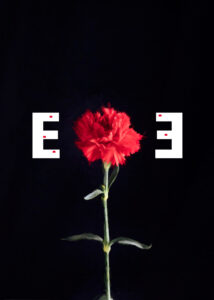 EE_elPont2020